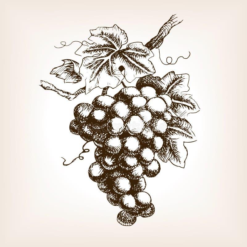 Mazzo di vettore disegnato a mano di stile di schizzo dell'uva illustrazione di stock