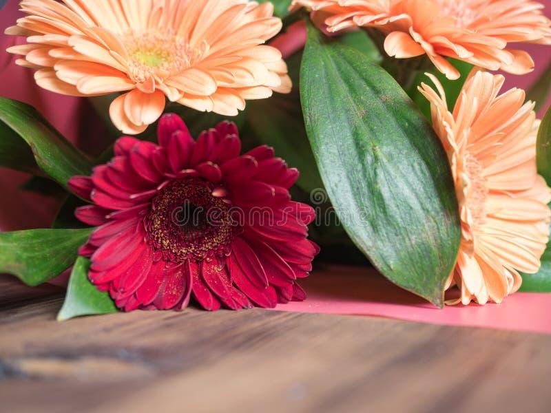 Mazzo fatto dei crisantemi, piante decorative delle margherite per il biglietto di auguri per il compleanno, invito, manifesti, c fotografie stock