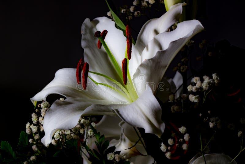 Mazzo festivo dei gigli nei colori rossi e bianchi immagini stock