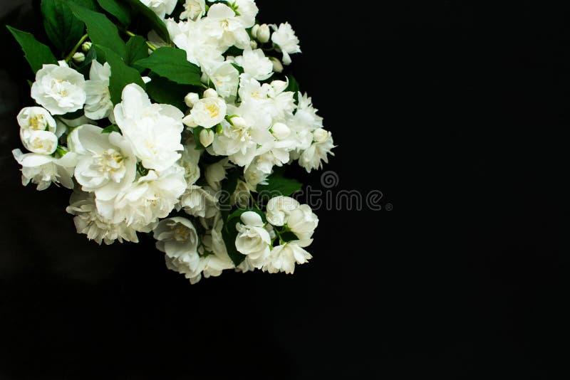 Mazzo fragrante del gelsomino su un fondo nero fotografie stock
