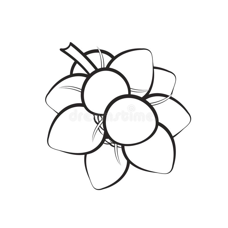 Mazzo nero del profilo di noci di cocco royalty illustrazione gratis