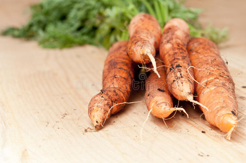 Mazzo organico della carota fotografia stock libera da diritti