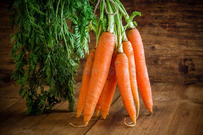 Mazzo organico fresco delle carote fotografia stock libera da diritti