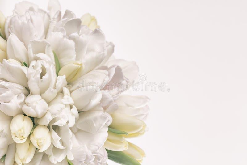 Mazzo pastello del tulipano immagini stock