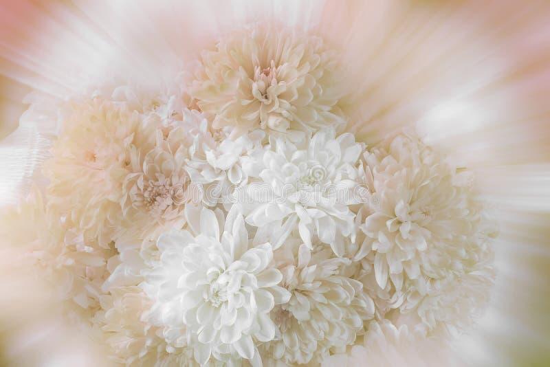 Mazzo romantico d'annata dei crisantemi con il fuoco selettivo molle su fondo vago immagine stock