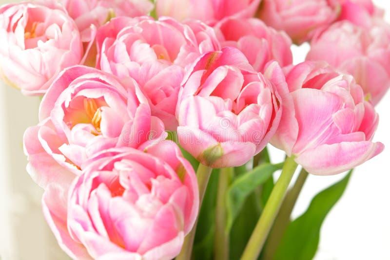 Mazzo rosa nostalgico del fiore del tulipano immagine stock libera da diritti