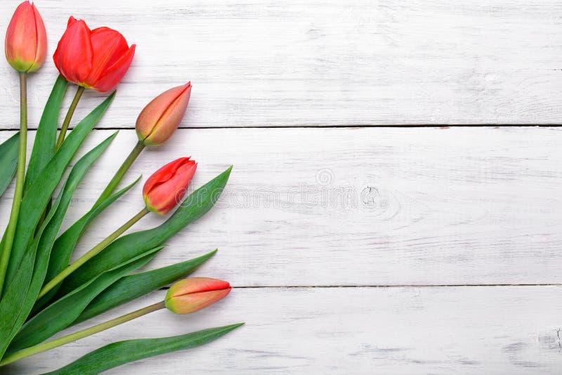 Mazzo rosso dei tulipani su fondo di legno Vista superiore, spazio della copia immagini stock