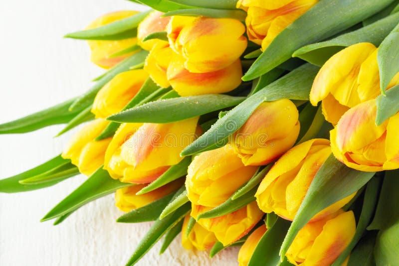 Mazzo rosso giallo dei tulipani del fiore della primavera fotografia stock libera da diritti