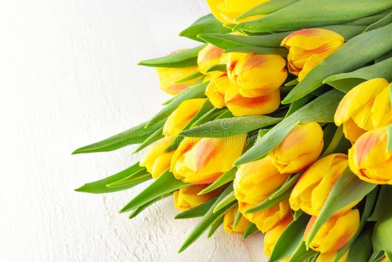 Mazzo rosso giallo dei tulipani del fiore della primavera fotografia stock