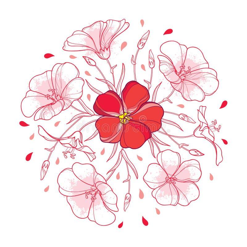Mazzo rotondo di vettore con la pianta del lino del profilo o fiore di Linum o del seme di lino, germoglio e foglia nel rosso pas illustrazione di stock