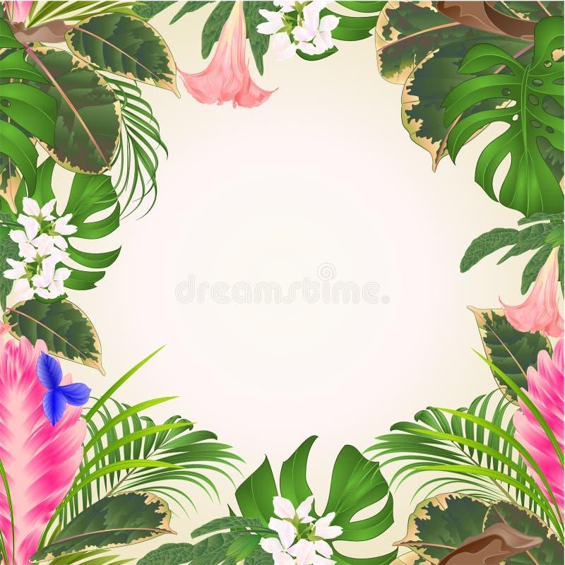 Mazzo senza cuciture di cyanea di tillandsia della struttura con i fiori tropicali palma, philodendron su un illustrati d'annata  illustrazione di stock