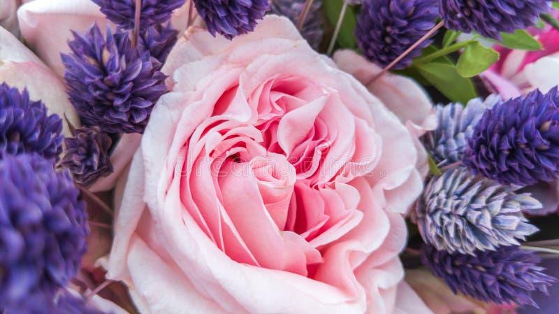 Mazzo splendido delle rose con i fiori secchi decorativi fotografia stock libera da diritti