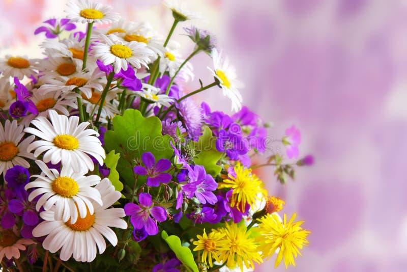 Mazzo variopinto dei fiori. royalty illustrazione gratis