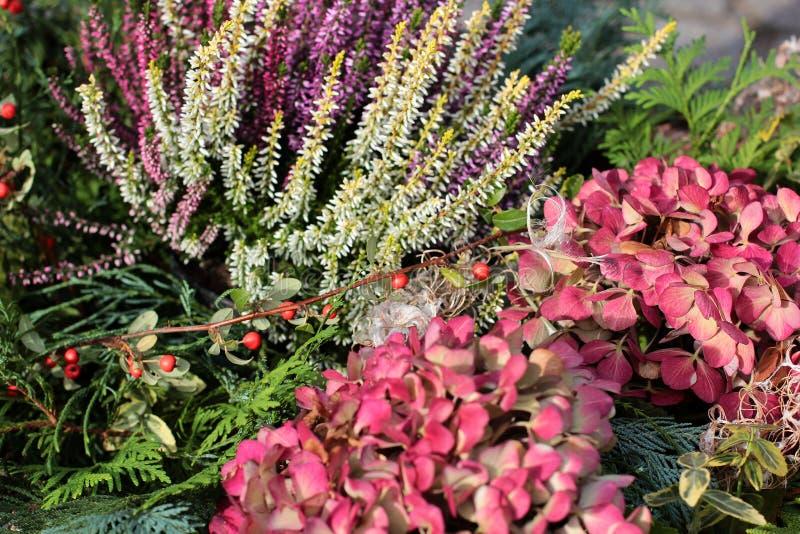Mazzo variopinto dei fiori freschi differenti Fondo rustico del fiore Fine in su Bello fondo dei fiori luminosi del giardino fotografia stock