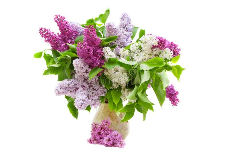 Mazzo variopinto dei lillà in un vaso fotografia stock