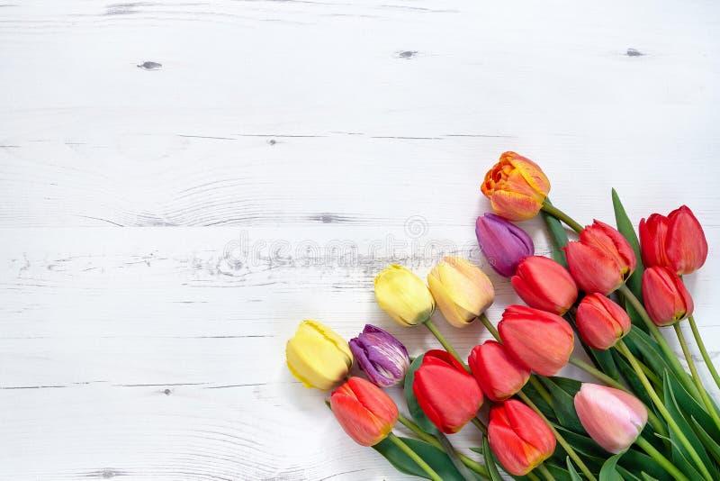 Mazzo variopinto dei tulipani su fondo di legno bianco Parte posteriore di festa immagine stock libera da diritti