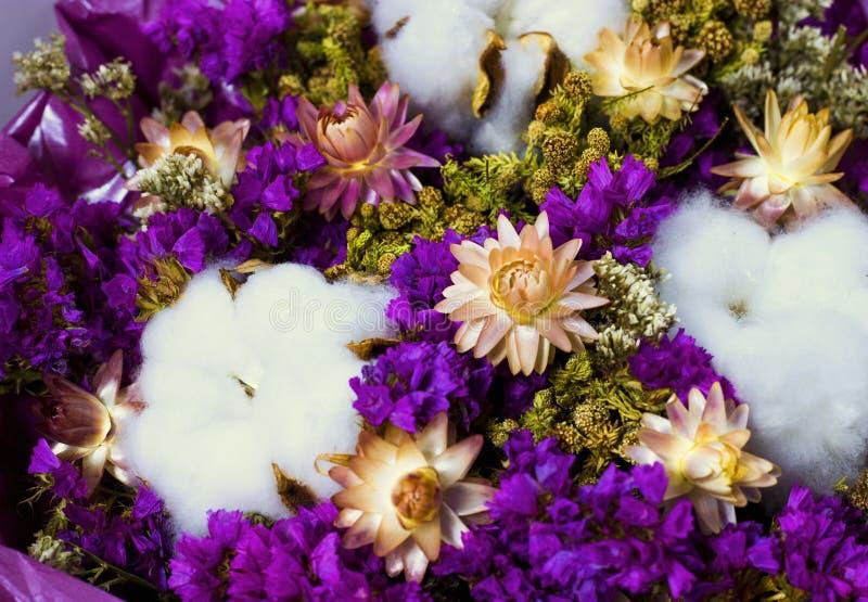 Mazzo variopinto dei wildflowers e del cotone asciutti immagini stock libere da diritti