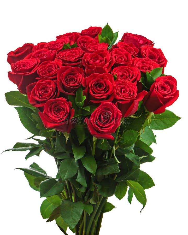 Mazzo variopinto del fiore dalle rose rosse isolate sul backgro bianco fotografia stock