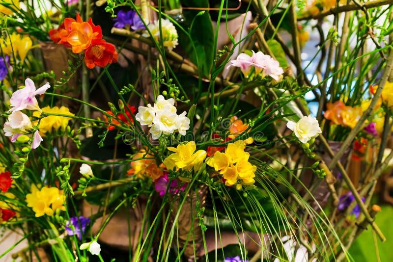 Mazzo vibrante del fiore del fondo multicolore di alstroemeria fotografia stock libera da diritti