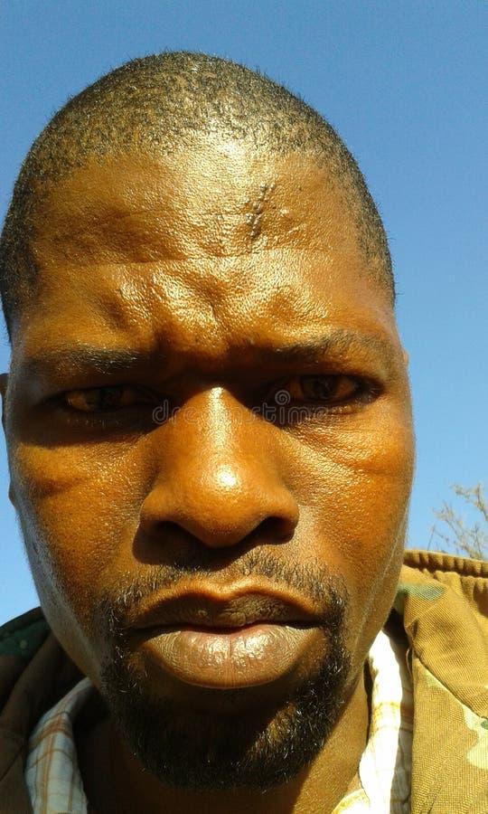 Mbongisibiya stock fotografie