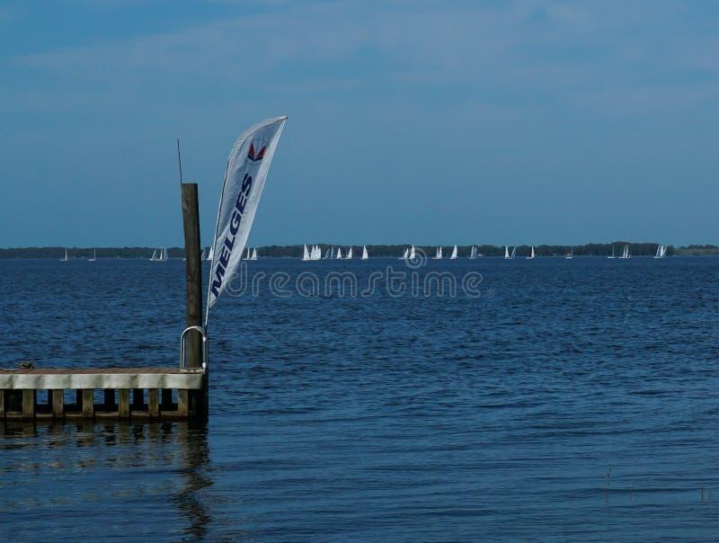 MC Scow Sailboats made by Melges, racing. Lake Eustis, FL/United States - 03/15/19 - MC Scow Sailboats made by Melges, racing at a Sailing Yacht Club on Lake stock photo