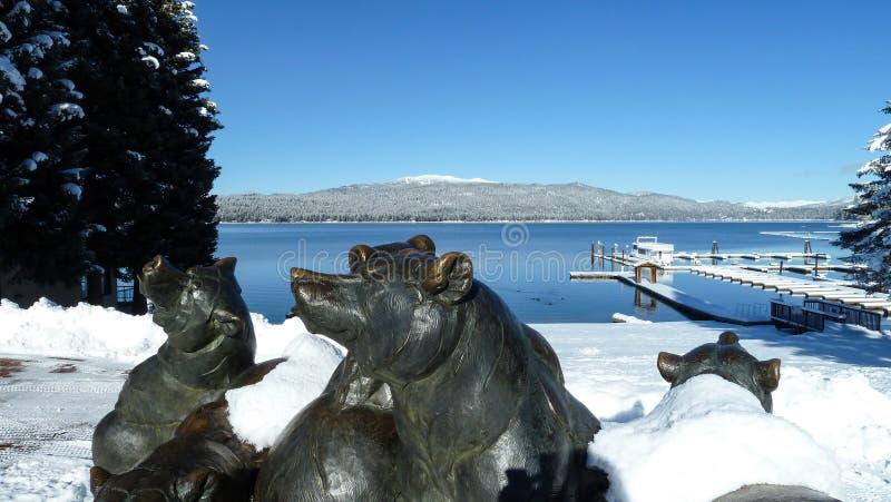 McCall, медведи озера Айдахо Payette стоковая фотография