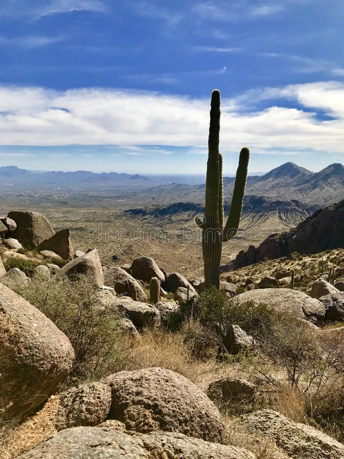 McDowell-Landschaftsschutzgebiet, Scottsdale, Arizona stockbilder