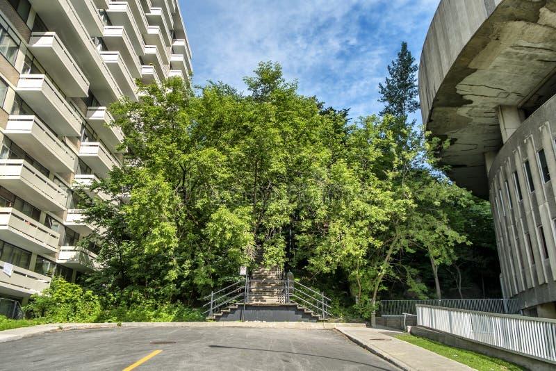 McGill Universitaire scène stock foto's