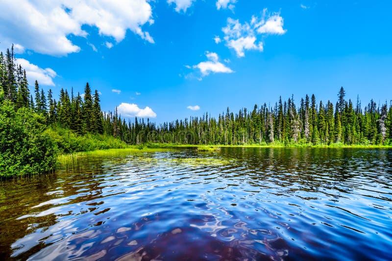 McGillivray sjö nära solmaxima in F. KR., Kanada arkivbild