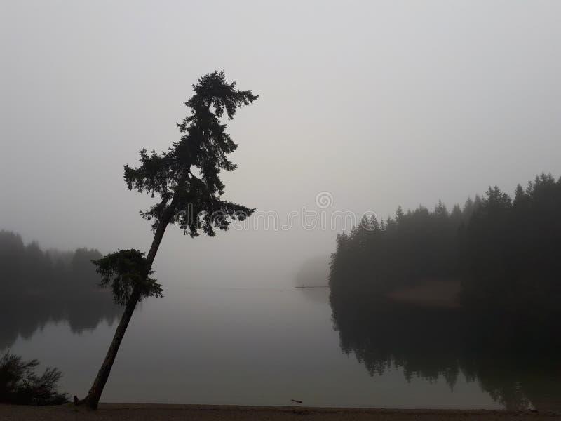 Mcgiver sjö royaltyfria foton