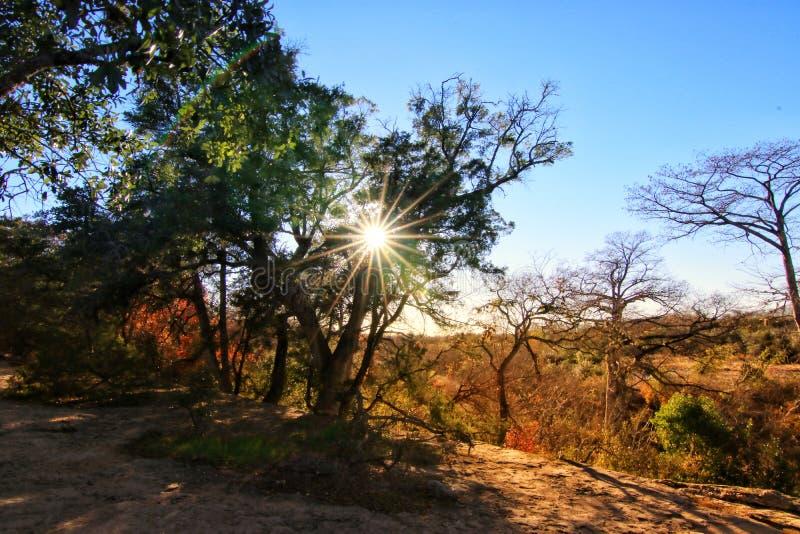 McKinney Falls State Park royalty free stock photos