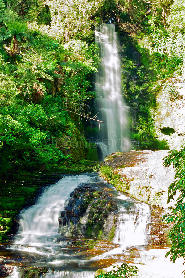 Download McLean falls, New Zealand stock image. Image of catlins - 13927429