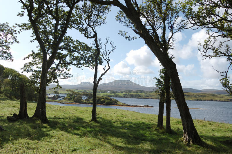 Mcleods Tables through trees. Mcleods Tables on Skye seen through trees royalty free stock image