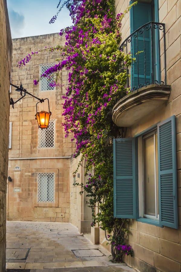 Mdina, Malta: casa maltese tradizionale del calcare con i fiori porpora luminosi fotografie stock