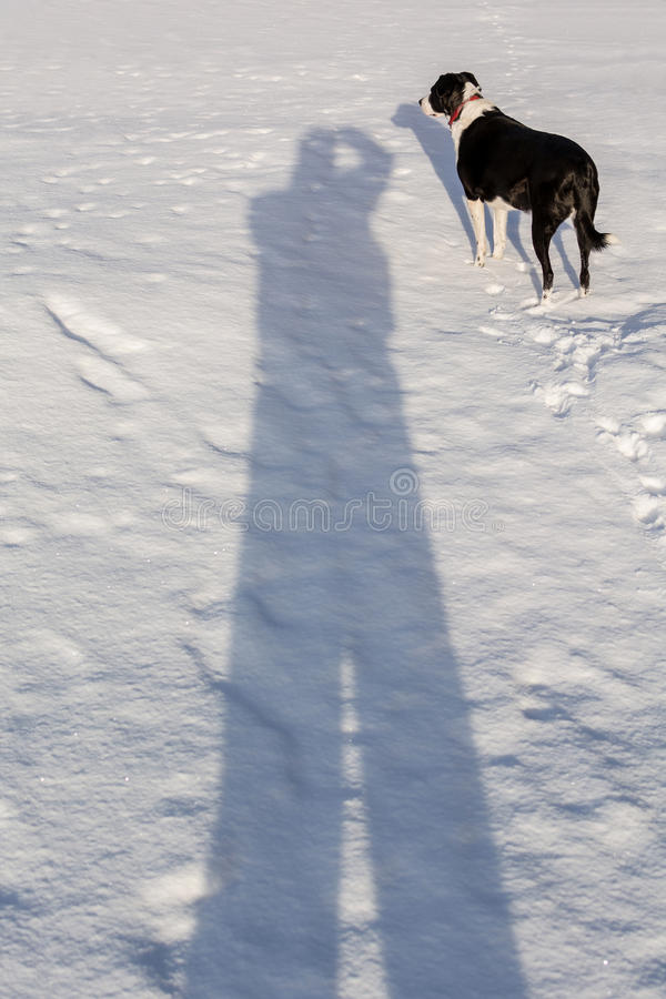 Free Me And My Shadow Stock Photo - 50283090