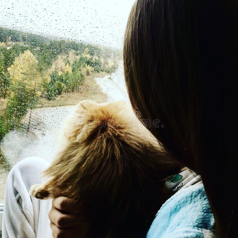 Me en Teddy stock afbeelding