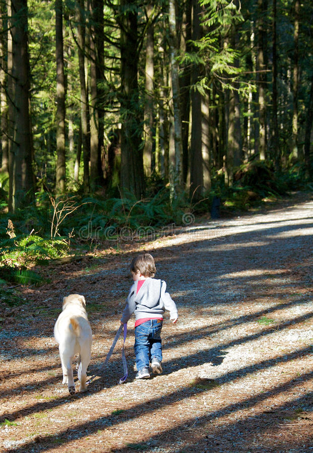 Download Me and my buddy stock photo. Image of labrador, beautiful - 24094154