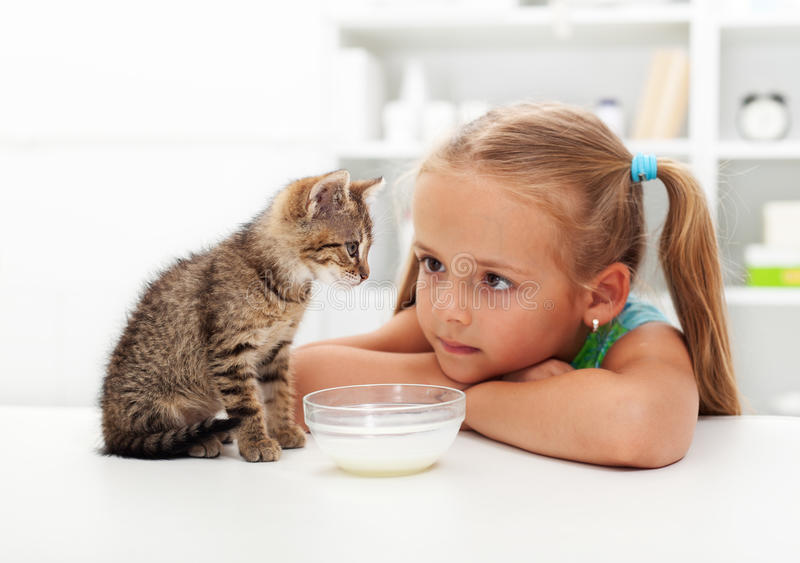 Me and my cat - little girl and her kitten royalty free stock photo