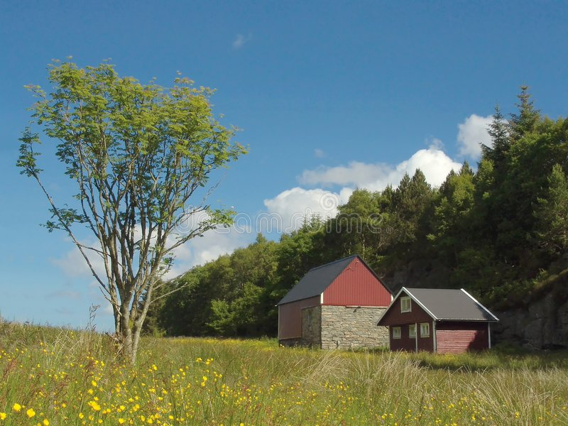 Download Meadow stock image. Image of house, farming, homestead, sunny - 9489