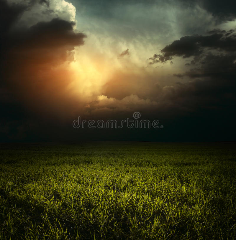 Free Meadow Royalty Free Stock Images - 15527349