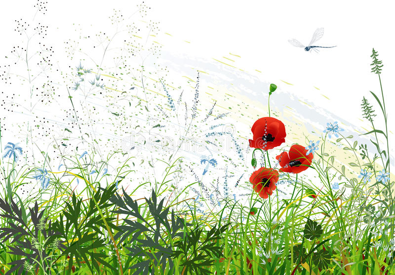 Meadow royalty free illustration