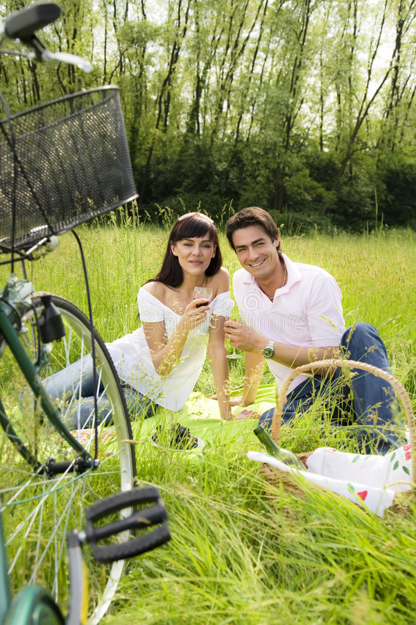 Download Meadow stock image. Image of happy, basket, outdoors, couple - 5138879
