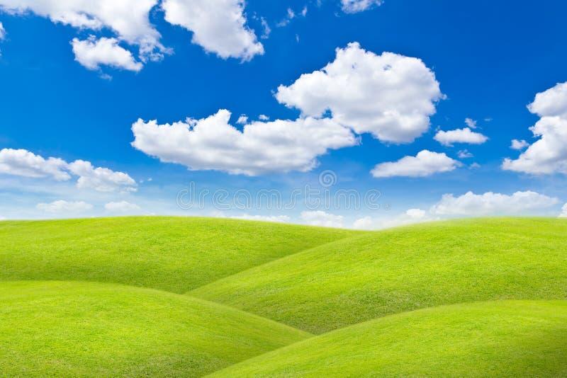 Meadow Against Blue Sky Royalty Free Stock Photos