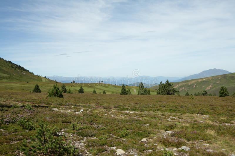 Meadow in Ariege, France. Pyrenean meadow in Ariege, Occitanie in south of France. Pailheres pass royalty free stock images