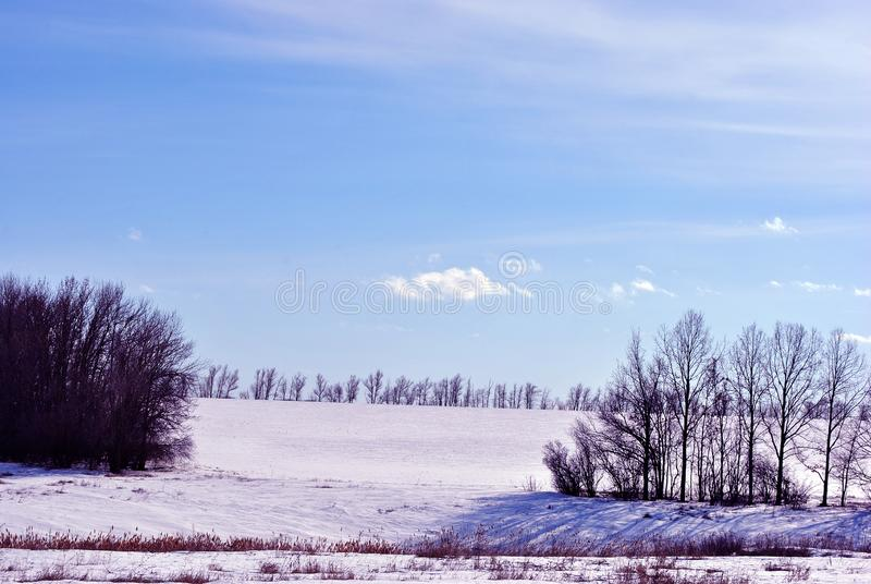 Meadow covered with snow, trees without leaves, blue cloudy sky. Background royalty free stock image