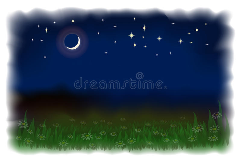 Meadow With Daisies. Night Landscape. Royalty Free Stock Photo