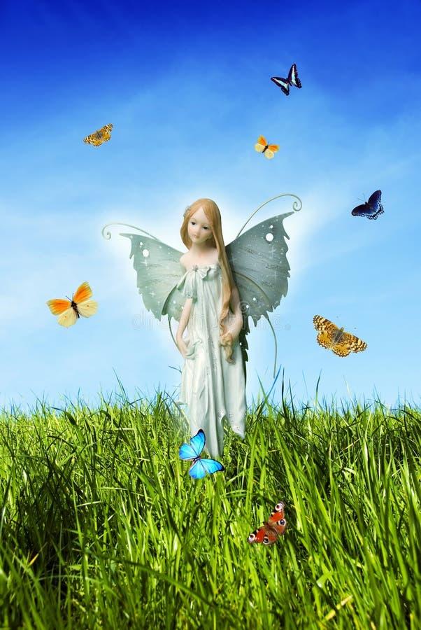 Meadow fairy stock photos