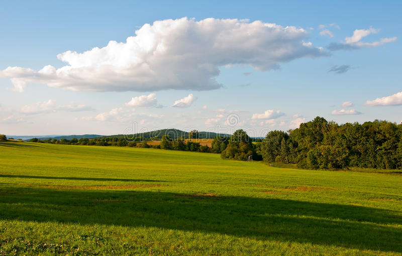 Download Meadow field stock photo. Image of agriculture, green - 26119830