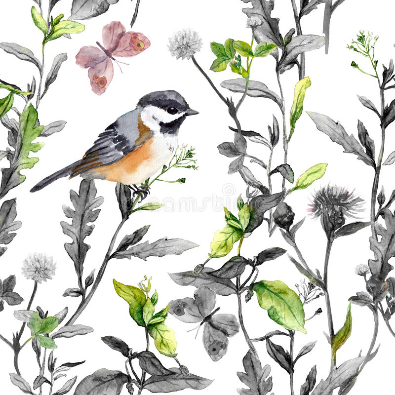 Meadow flowers, bird, butterflies. Seamless floral pattern, black-white colors. Watercolor royalty free illustration
