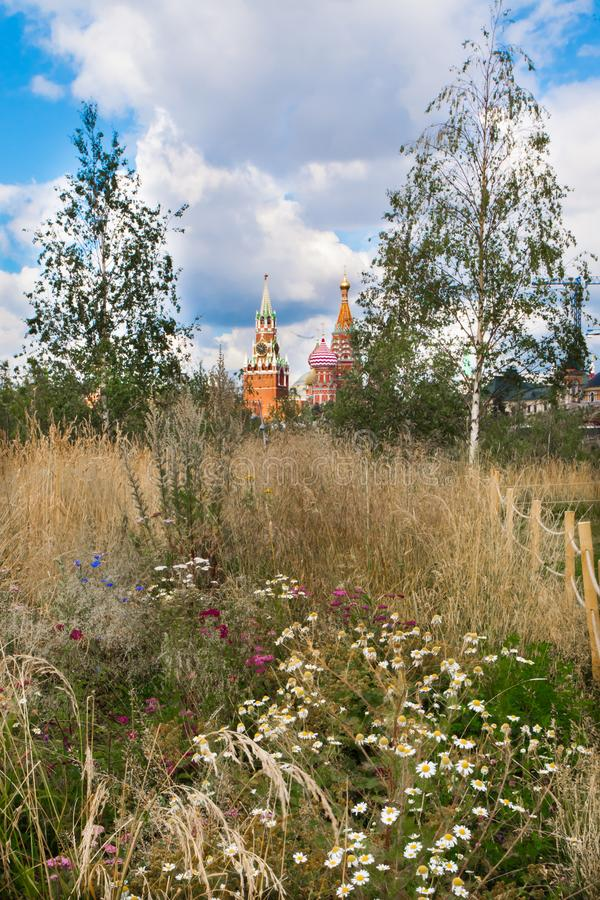 Meadow with flowers and young birches, in the background the Mos. Cow Kremlin. Russia Moscow royalty free stock photography